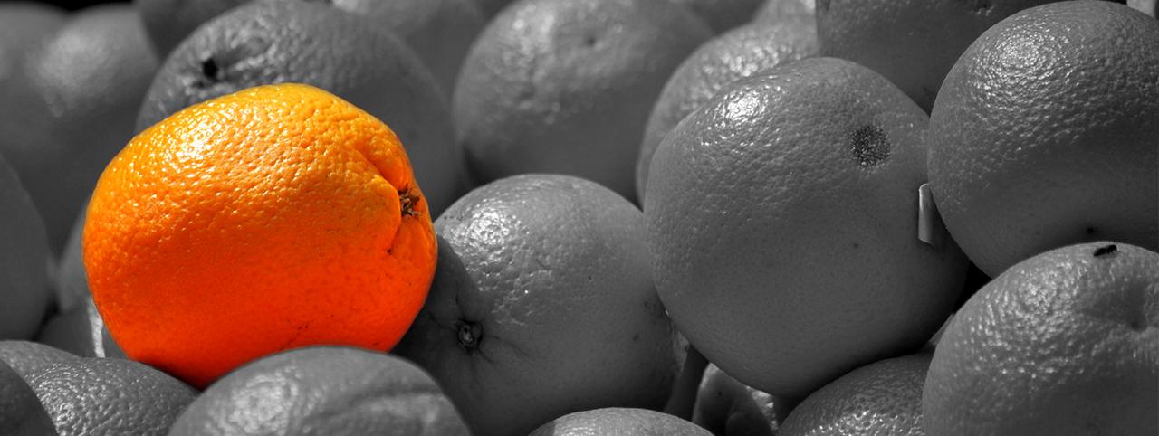 Ici on vend de belles oranges pas chères !